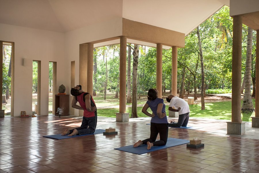 Shreyas - Wellness Package (Yoga and Skin Care) - Tour