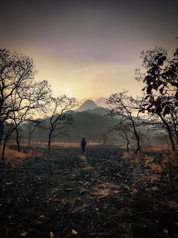 Night Jungle trek to Songiri Fort - Tour