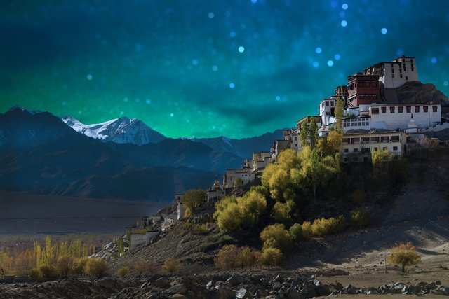 Hotels in Leh - Collection