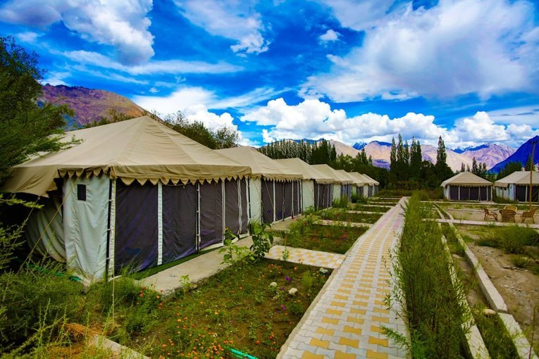 Nubra Escape camp - Tour