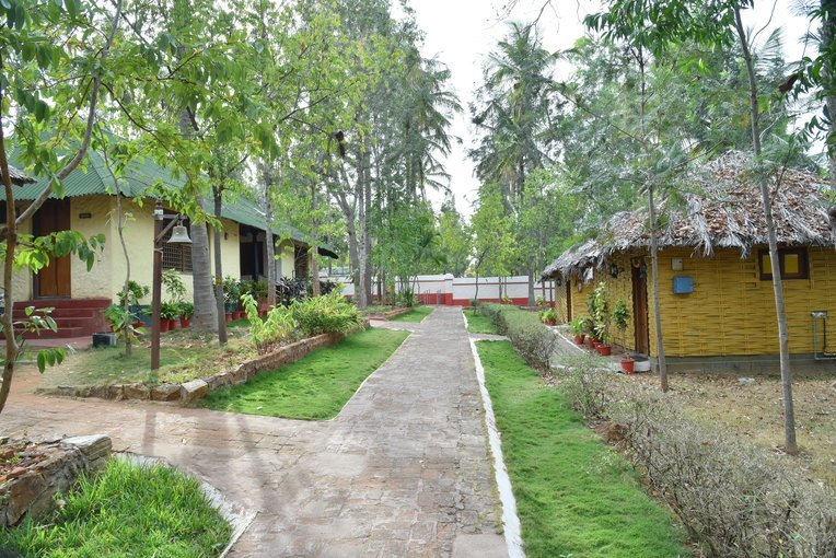 Indus Valley Ayurveda Center - Short Rejuvenation Program - 2 Nights - Tour