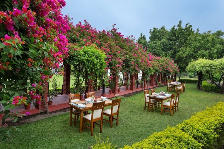 Naturoville Himalayan Wellness Retreat - Spine and Neck Treatment Package - Tour