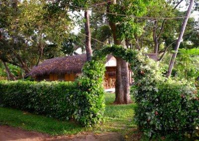 Keraleeyam Ayurveda Resort - Ayurveda Stress Management Package - Tour
