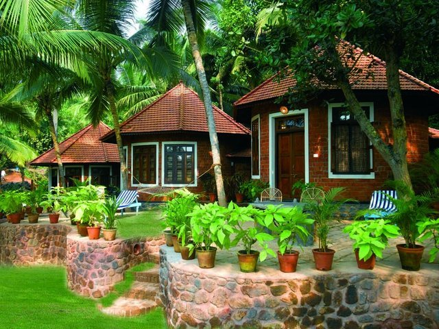 Somatheeram / Manaltheeram Ayurveda Retreat - Collection