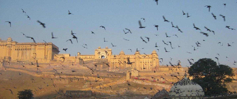 Exotic India - Udaipur to Delhi - Tour