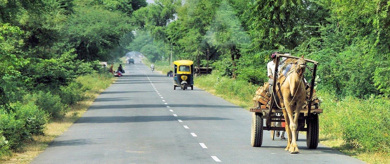 Udaipur to Jodhpur (Self-Guided) - Tour