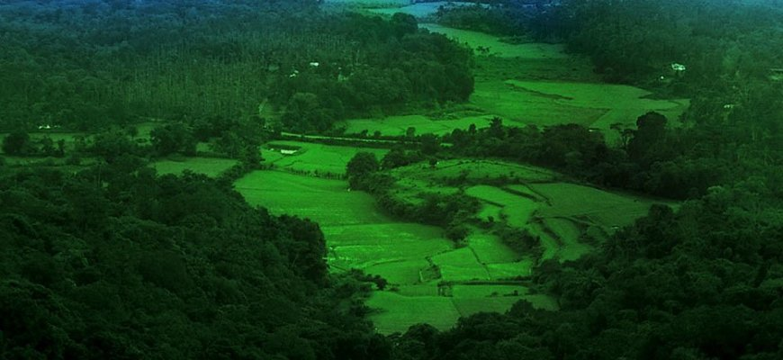 Explore Coorg Package From Bangalore - Tour