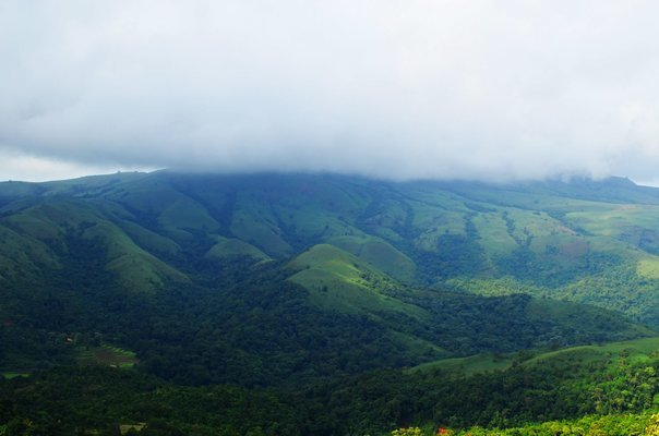 Exotic Coorg Package - Tour