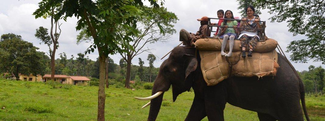 Dubare Elephant camp, Nisargadhama & Golden temple - Tour