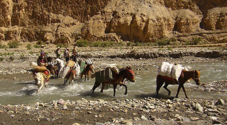 Chilling to Shang via Markha Valley Trek - Tour