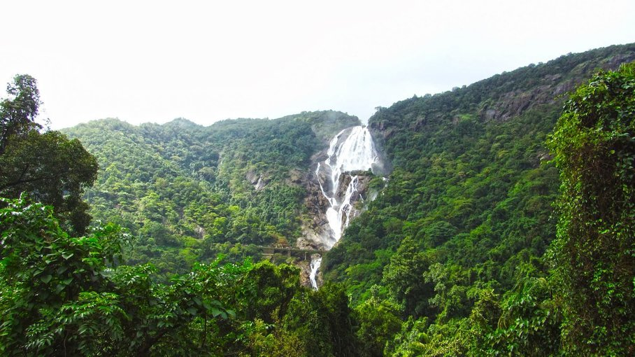 Dudhsagar waterfalls Day Trip in Goa - Tour