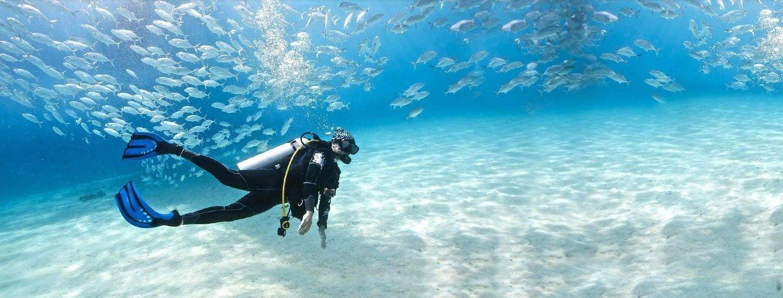 Marine Scuba Diving In Goa - Tour