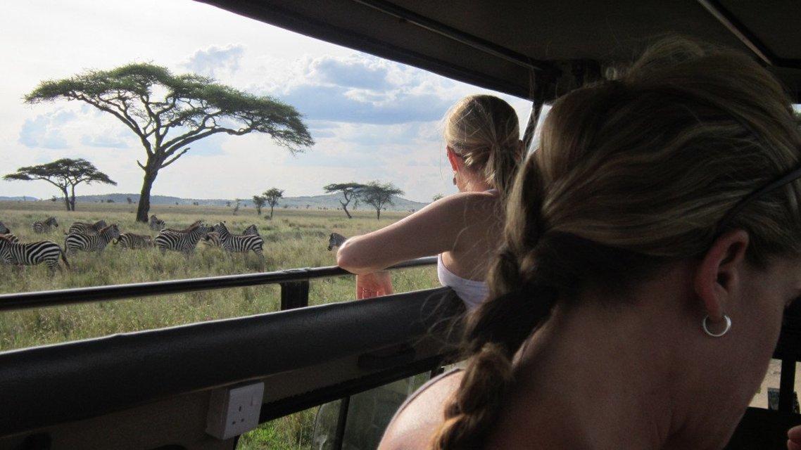 4-Day Serengeti and Ngorongoro Crater Safari from Mwanza, drive back to Mwanza - Tour