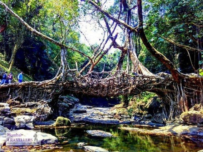 Offbeat Meghalaya-Monsoon Special - Tour