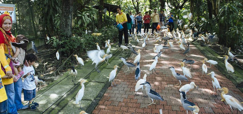 Kuala Lumpur Park & Garden Tour, Sightseeing in Kuala Lumpur - Tour