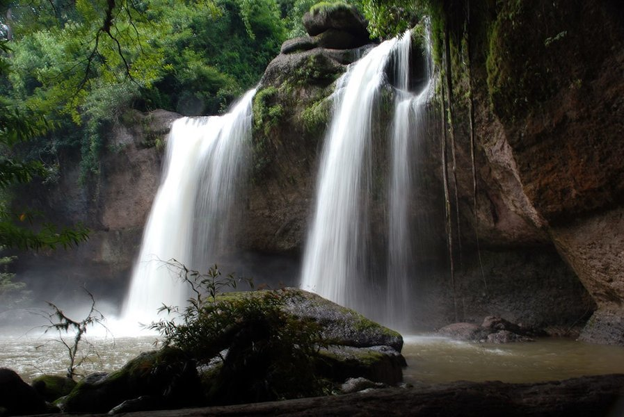 Khao Yai National Park Trekking with Ox Cart and Elephant Tour With Lunch, Sightseeing in Bangkok - Tour