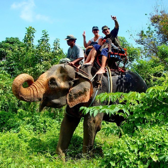 Elephant Trekking, Sightseeing in Phuket - Tour
