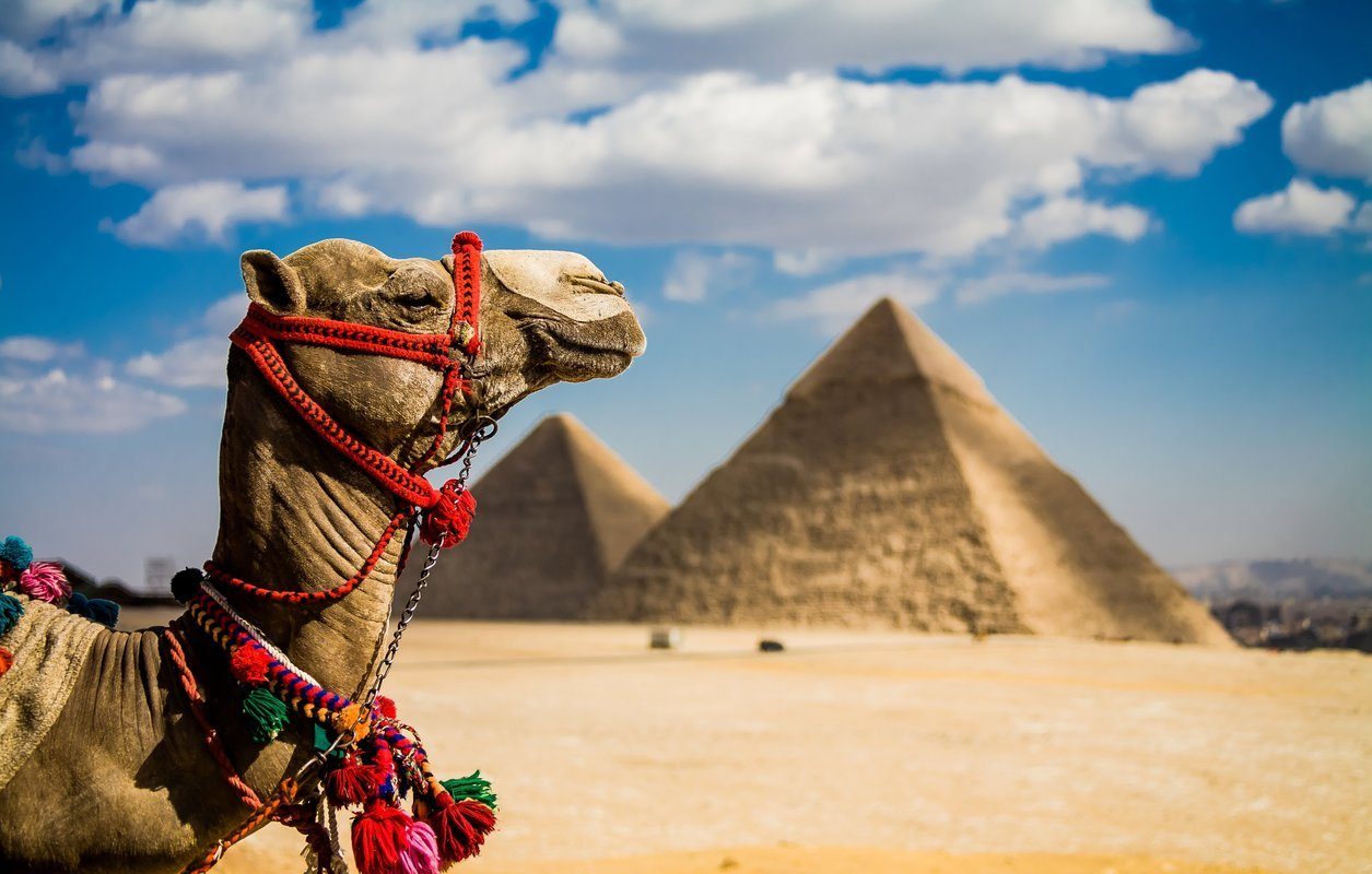 Egypt Packages - Collection