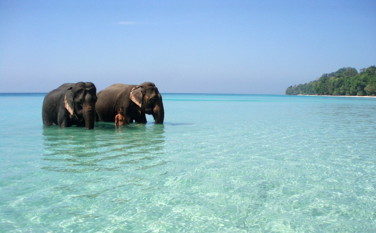 Andaman Packages - Collection
