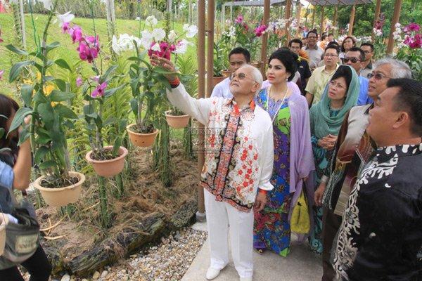 Orchid Tour, Sightseeing in Kota Kinabalu - Tour