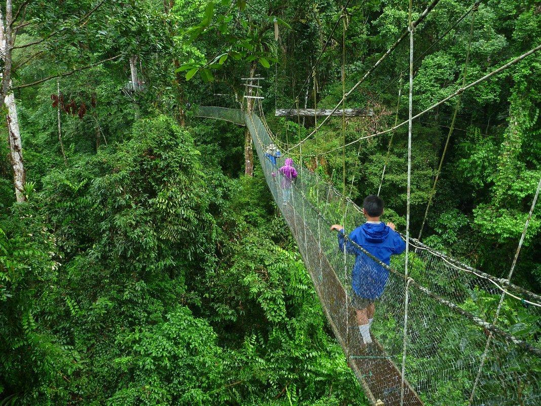 Kota Kinabalu Sightseeings - Collection