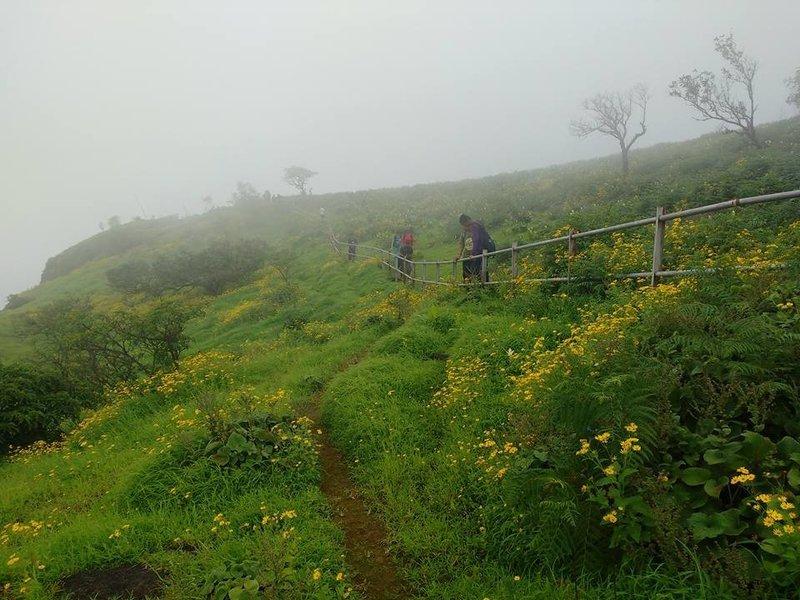 Raireshwar – Kenjalgad trek - Tour