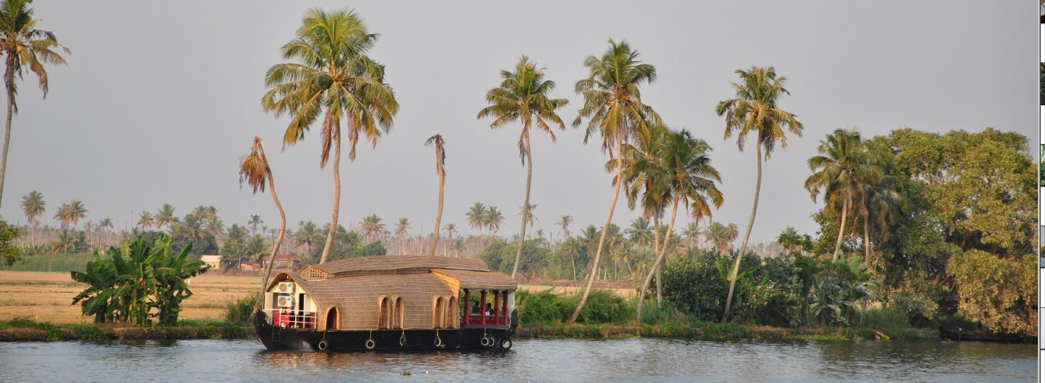 Kochin and Alappuzha - Tour