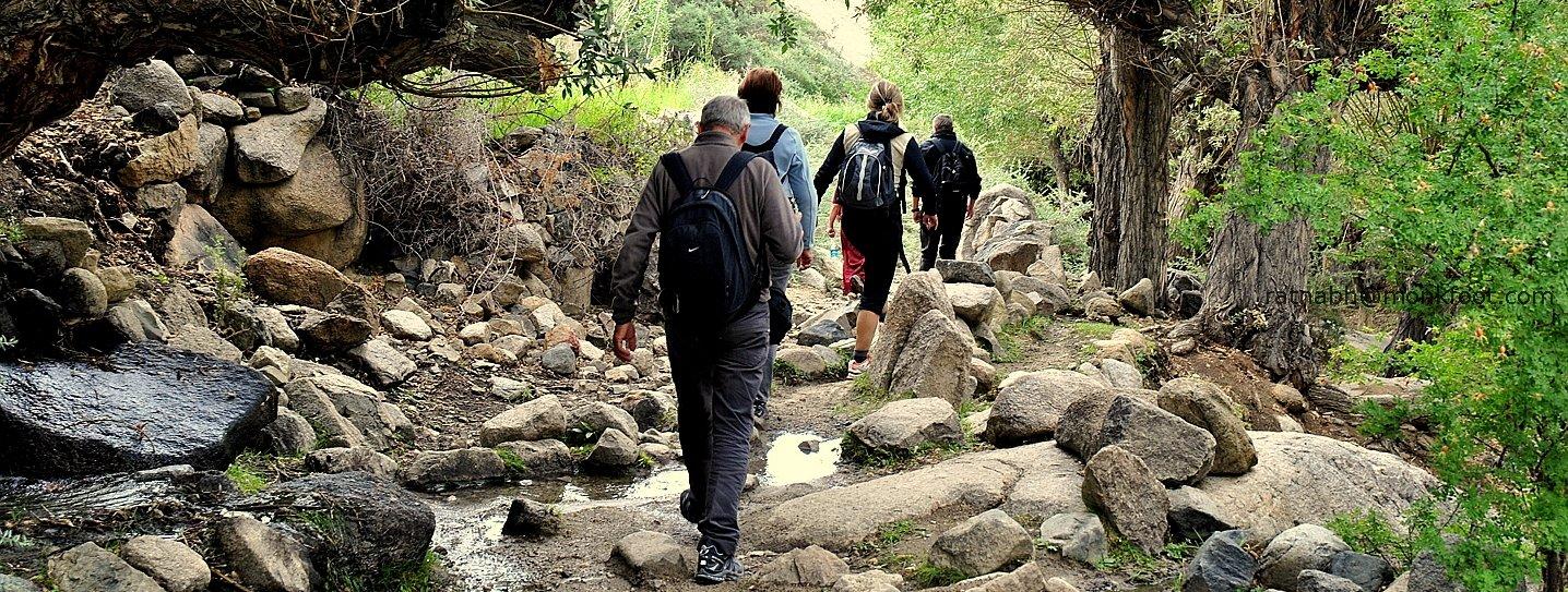 Sham Valley Trek - Tour
