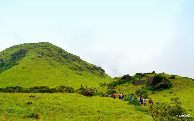 Trek to Tadiyandamol, Coorg - Tour
