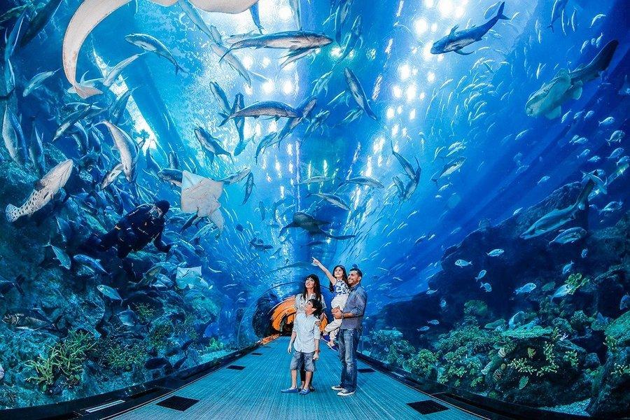 Dubai Mall Aquarium and Underwater Zoo Tickets in Dubai - Tour
