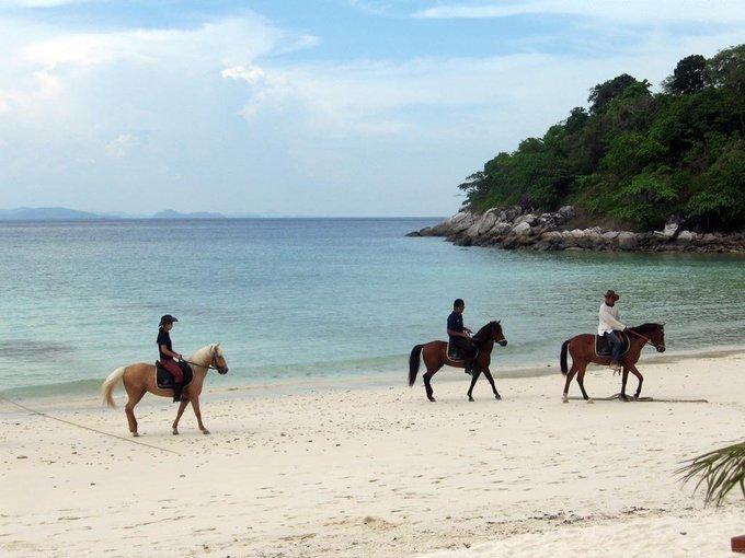 Horse Riding Tour Tickets  in Mauritius - Tour