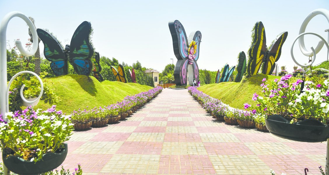 Butterfly Garden Tickets in Dubai - Tour