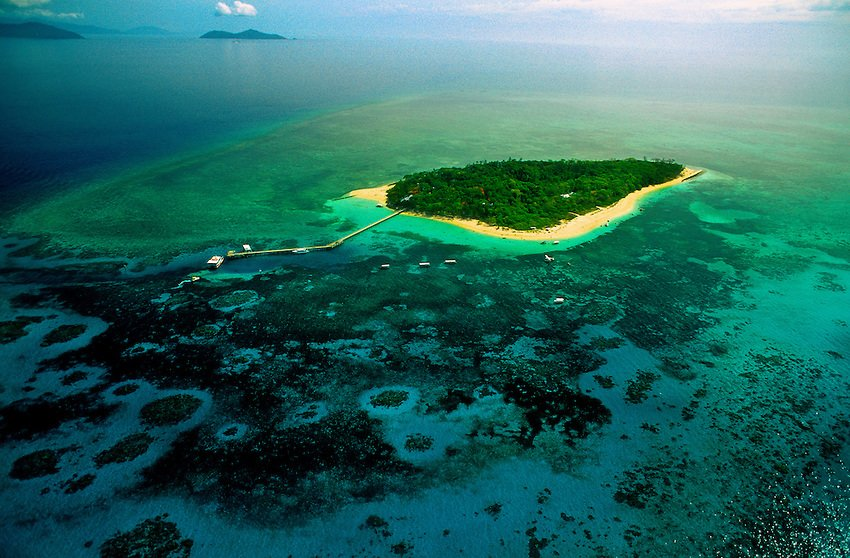Big Cat Green Island Cruise Tickets in Cairns - Tour