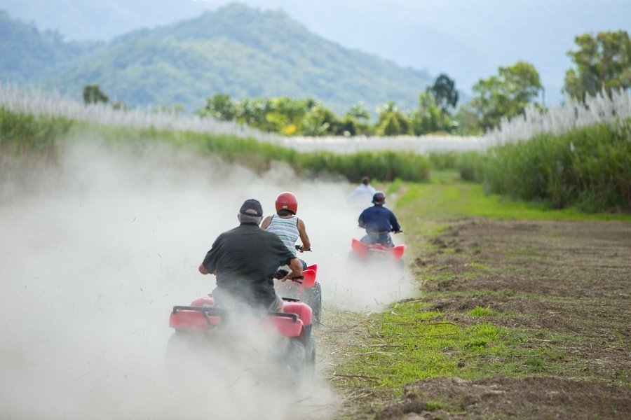 Blazing Saddles Tour, Sightseeing in Cairns - Tour