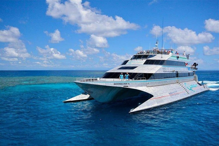 Quick Silver Cruise Tour, Sightseeing in Cairns - Tour