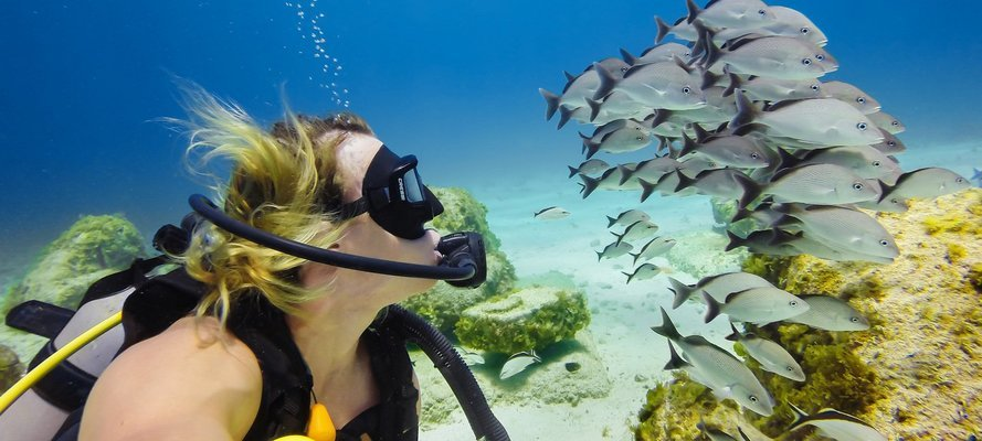 Netrani Island Scuba Diving - Tour