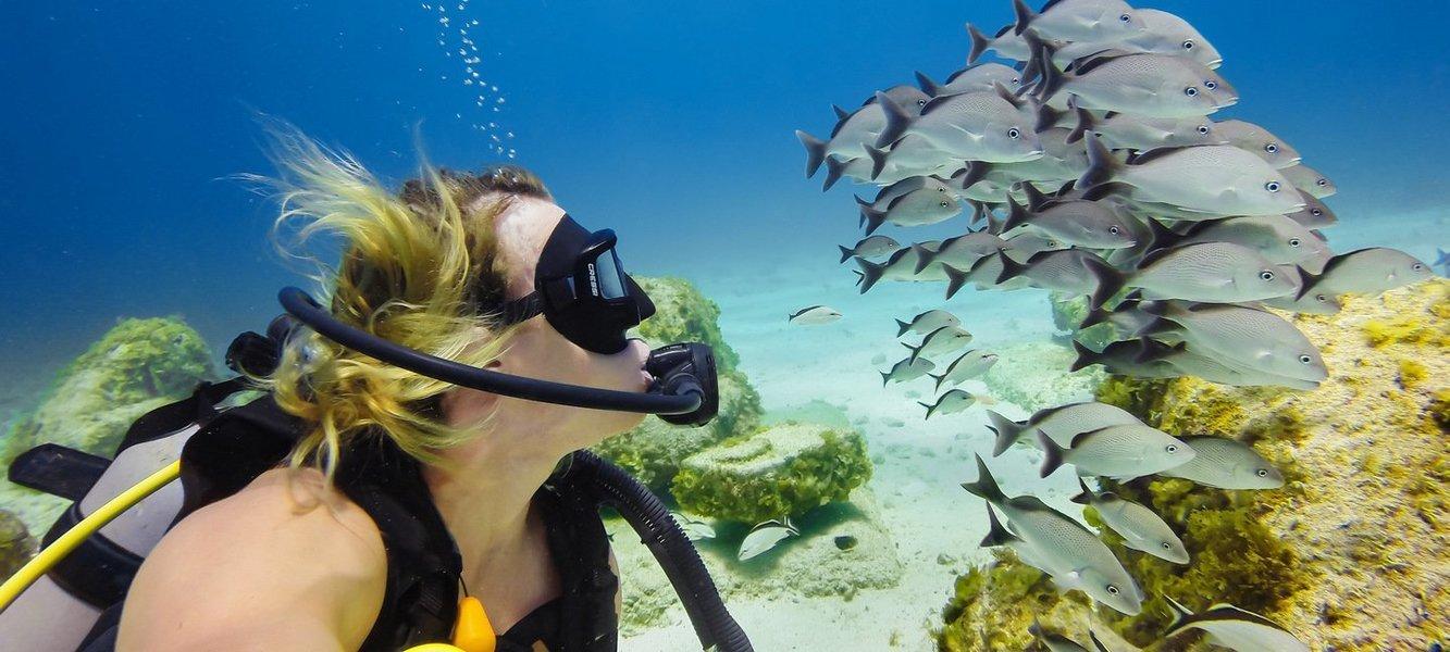 Netrani Island Scuba Diving - Tour