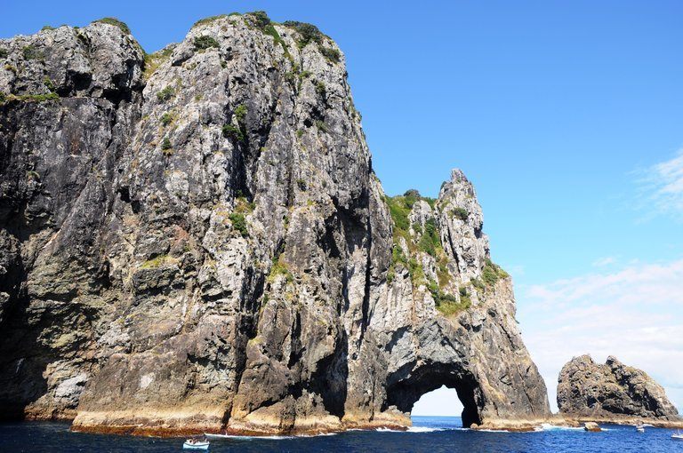 Bay of Islands Day Tour with Hole in the Rock Dolphin Cruise, Sightseeing in Auckland - Tour