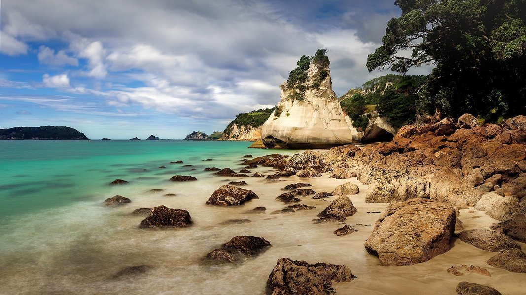 Coromandel Day Tour, Sightseeing in Auckland - Tour