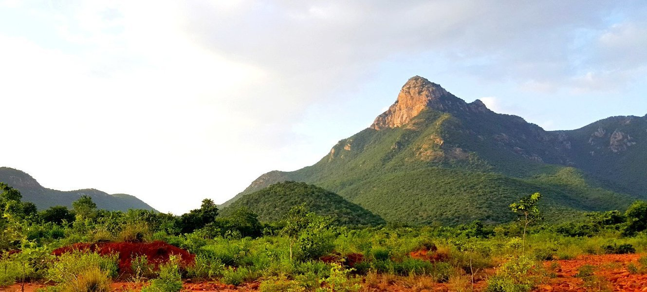 Camping at Nagalapuram, Eastern Ghat ( AP ) - Tour