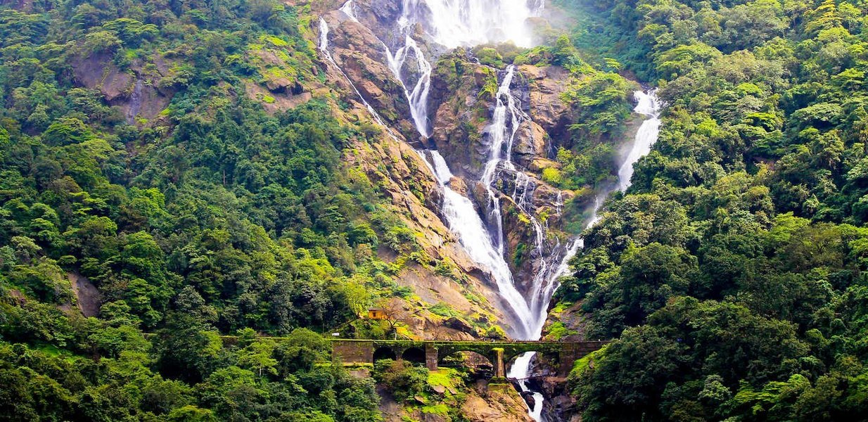 Trek to Dudhsagar Waterfalls - Tour