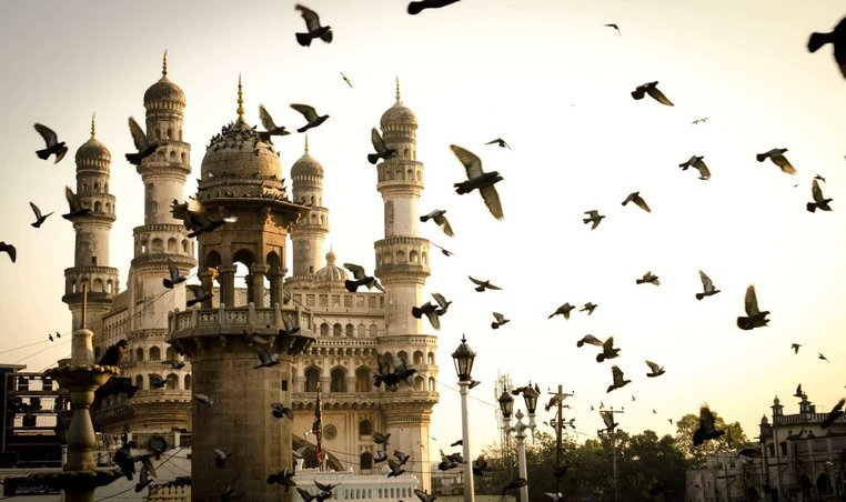 Andhra Pradesh - Collection