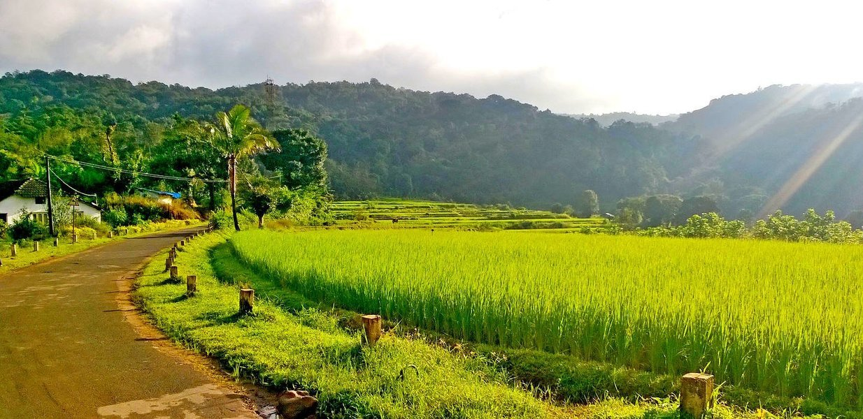 Trek to Kopatty - Coorg - Tour