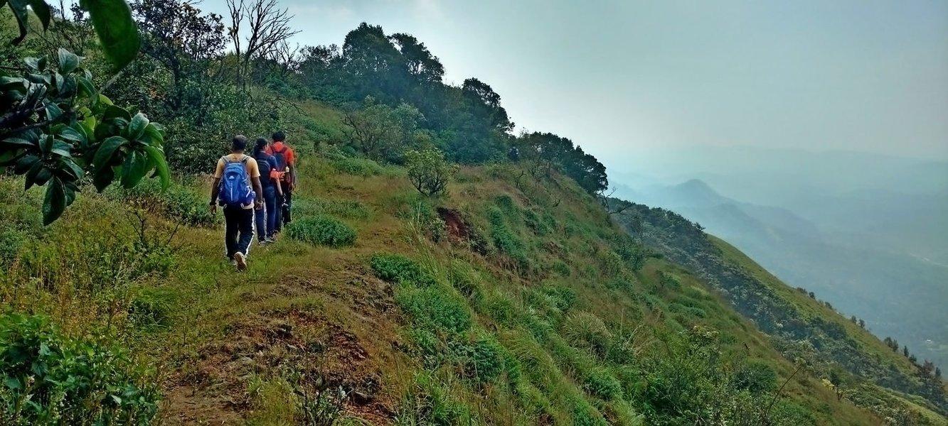 Trek to Nishani Betta (Galibeedu) - Tour