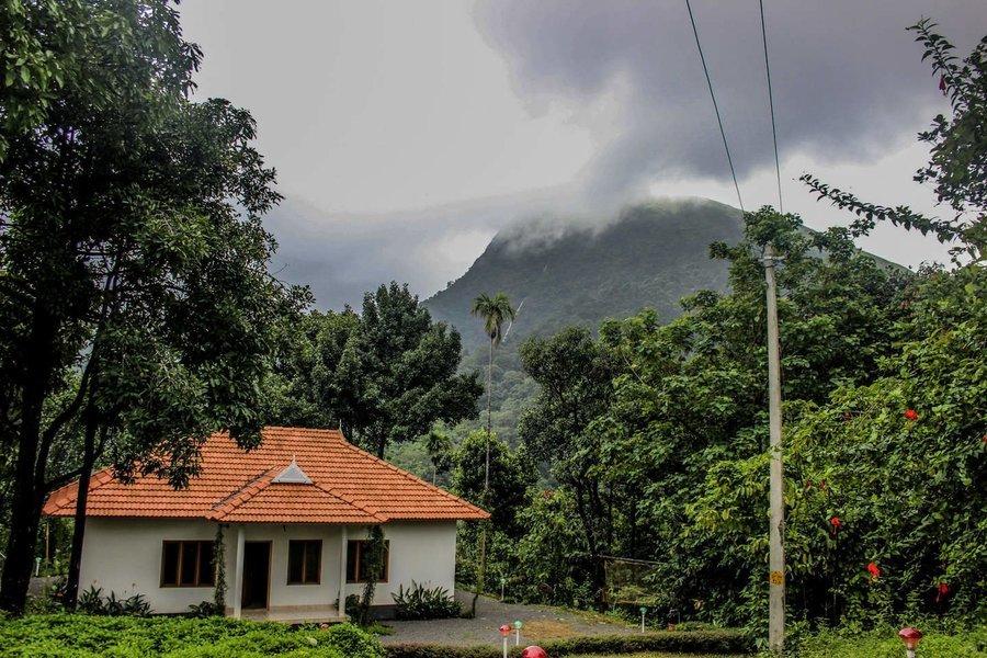Trek to Paithalmala, Kerala - Tour