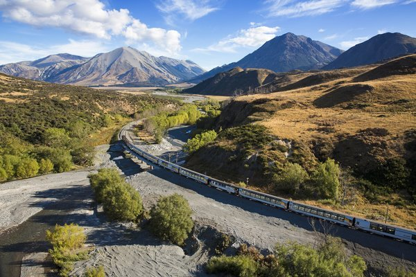 Alpine Safari Tour, Sightseeing in Christchurch - Tour