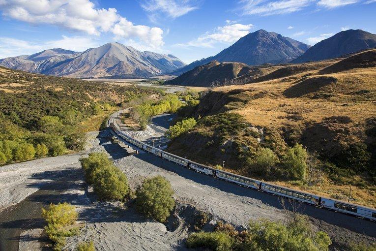 Alpine Safari Tour, Sightseeing in Christchurch - Tour
