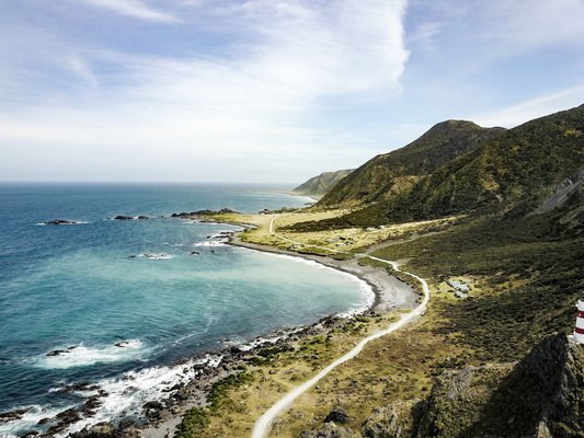 Palliser Bay: Off the Beaten Track Tour, Sightseeing in Wellington - Tour