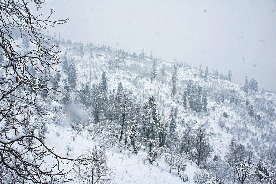 Snow Trek, Manali - Tour