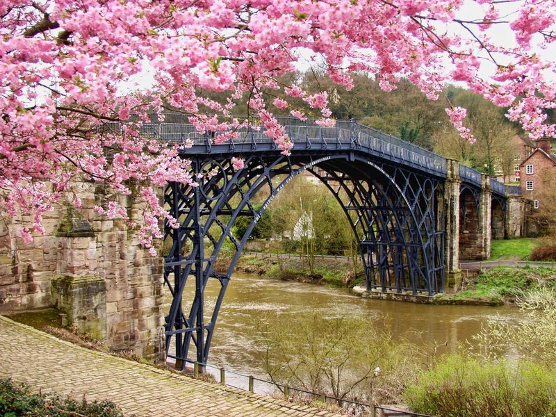 JAPAN -Cherry Blossom with Hiroshima Tour - Tour